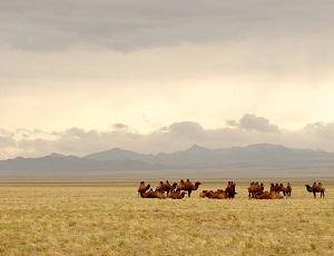 mongolia us relationship
